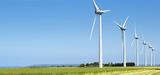 Complément de rémunération : une mise en place confuse dans l'éolien