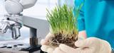 Programme d'investissements d'avenir : le troisième volet consacre 1,8 milliard aux technologies vertes