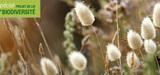 Ce que contient la nouvelle loi sur la biodiversité