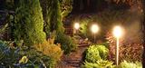 Eclairage nocturne et protection de la biodiversité, une alliance impossible ?