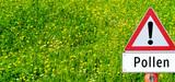 Allergies : la surveillance des pollens et des moisissures est renforcée