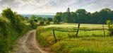 Pourquoi la loi biodiversité ne protégera pas les chemins ruraux