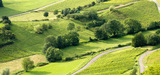 L'obligation de compensation agricole des projets d'aménagement est mise en place