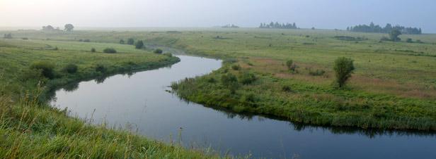 Pesticides dans l'eau: une amélioration environnementale ambigüe