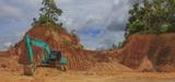 La Cour pénale internationale affirme sa compétence sur les crimes écologiques