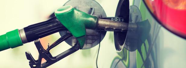 Les agrocarburants de deuxième génération auront aussi besoin de cultures énergétiques