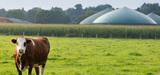 Transition énergétique : la chaleur et le biogaz à la traîne