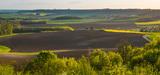 Loi Biodiversité: le décret sur les zones prioritaires est dévoilé