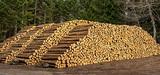 La filière du chauffage au bois pourrait profiter des tensions sur le réseau électrique