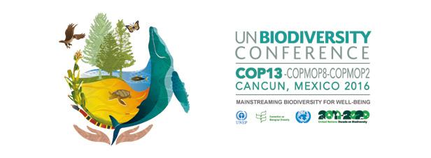 Les pays s'engagent à intensifier leurs efforts pour stopper l'érosion de la biodiversité