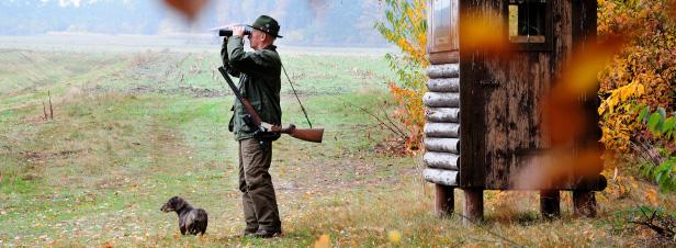 Le travail commun entre Agence de la biodiversité et chasseurs démarre avec difficulté