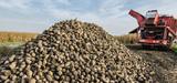 Directive EnR : la filière de l'éthanol compte sur le Conseil et le Parlement pour défendre ses intérêts