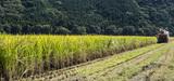 Zones prioritaires pour la biodiversité: le décret entre en vigueur