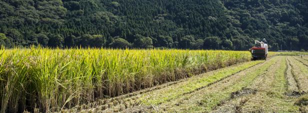 Zones prioritaires pour la biodiversité : le décret entre en vigueur