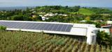 Dans les îles, donner la priorité aux énergies renouvelables n'est pas une si bonne idée