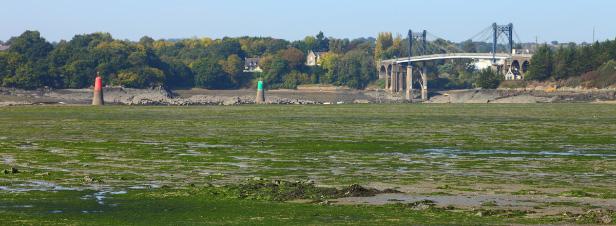 Marées vertes et baisse de fréquentation touristique semblent aller de pair
