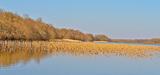 Biodiversité : les Etats européens se disent prêts à renforcer le réseau Natura 2000