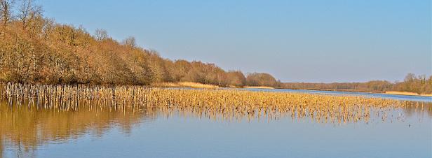 Biodiversité: les Etats européens se disent prêts à renforcer le réseau Natura 2000
