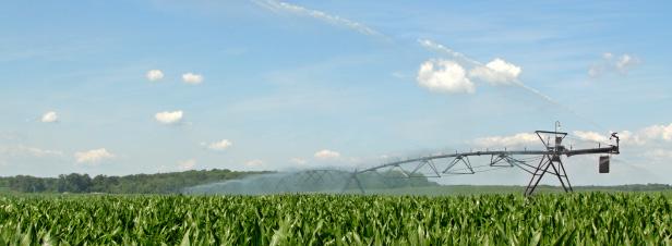 Réutilisation des eaux usées : une expérimentation envisagée malgré l'avis défavorable de l'Anses