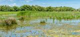 Les zones humides peuvent à nouveau bénéficier d'une exonération de taxe foncière