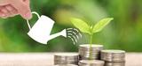 Transition énergétique : les collectivités locales veulent tirer profit de la taxe carbone