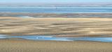 """Parc éolien de Dieppe-Le Tréport : """"Il serait inadmissible que l'avis du parc naturel marin ne soit pas suivi"""""""