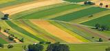Mieux connaître les écosystèmes agricoles pour améliorer les pratiques