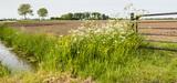 L'arrêté pesticides pourrait tomber pour violation du principe de non-régression du droit de l'environnement