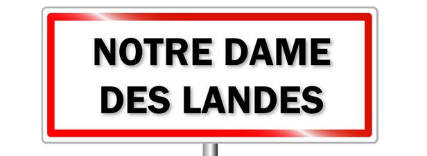 Notre-Dame-des-Landes : les médiateurs soulignent les atouts d'agrandir l'aéroport existant