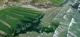 Le deuxième plan algues vertes entre en action