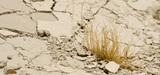Le Giec plus que jamais sommé d'éclairer les politiques sur l'évolution du climat