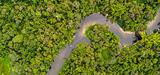 Le gouvernement allège les règles applicables à l'évaluation environnementale en Guyane