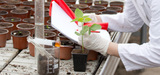 L'Europe souhaite améliorer la transparence autour de l'autorisation des pesticides