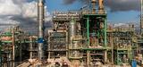 Bio-raffinerie de La Mède : Total importera 300.000 tonnes par an d'huile de palme