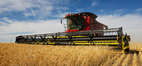 Transition agricole : les filières peinent à se mettre en marche