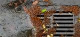 Compétences eau et assainissement : les députés reviennent sur la gestion des eaux pluviales