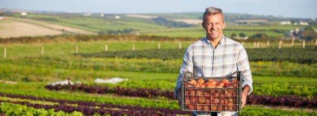 Le monde agricole se dote d'un contrat de solutions anti-phyto