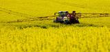 Deux arrêtés modifient la règlementation sur la durabilité des biocarburants