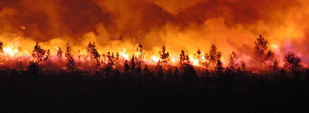 Canicule, incendies, inondations, froid… la planète affronte des situations climatiques extrêmes