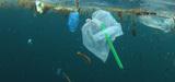 """""""En marche"""" contre les plastiques inutiles"""