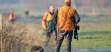 Réforme de la chasse : le malentendu sur la gestion adaptative des espèces