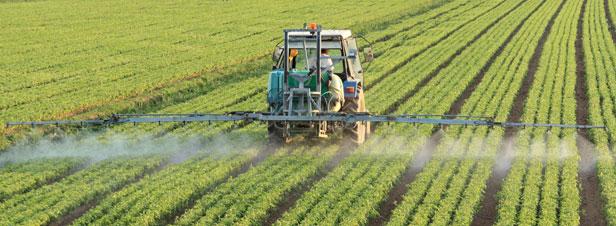 Adoption de la loi agriculture : le recours aux phytosanitaires sera davantage encadré