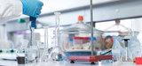 Seulement 31% des produits chimiques se révèlent conformes au règlement Reach