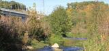 LGV Tours-Bordeaux : comment le maître d'ouvrage met en oeuvre son obligation de compensation écologique