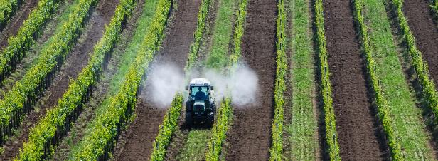 Autorisation des pesticides : le Parlement européen veut une évolution de la réglementation