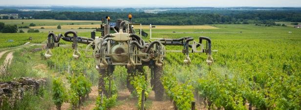 Pesticides perturbateurs endocriniens : Générations futures tire la sonnette d'alarme