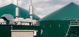 Méthanisation: les résultats des appels d'offres cogénération biomasse déçoivent