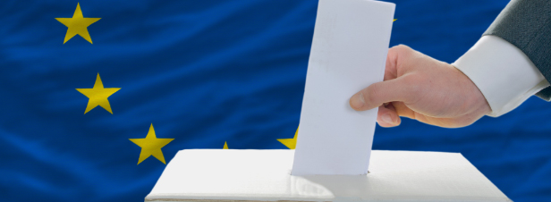 Elections européennes : ce que proposent les listes en matière d'environnement