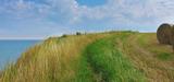 Les espaces agricoles littoraux vont être mieux protégés de la pression foncière