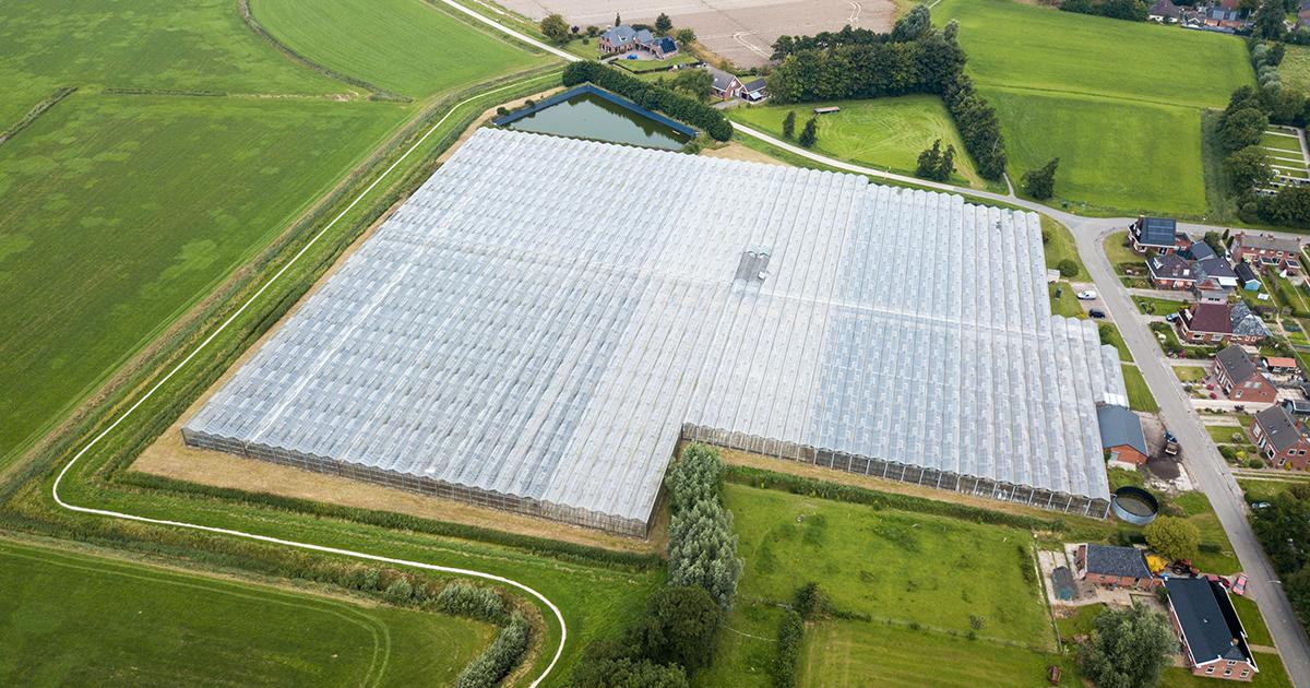 Photovoltaïque et agriculture: le déploiement se révèle plus facile sur serres